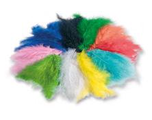Dekorativno barvno perje